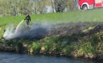 Gaszenie trawy na wale Raduni