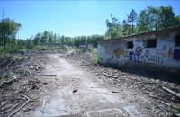 Wycięte drzewa na terenie byłej jednostki wojskowej