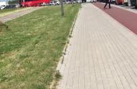 Korek przy szlabanach na wjazd na lotnisko
