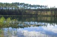 Wędrówka wśród jezior lobeliowych