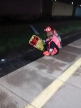 Służby na miejscu wypadku kolejowego w Gdyni