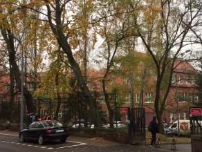 Mandaty za parkowanie przy Traugutta w Gdańsku