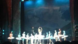 Taniec łabędzi - Jezioro Łabędzie