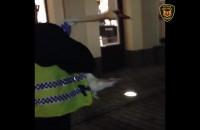 Ratowanie łabędzia przez strażników miejskich