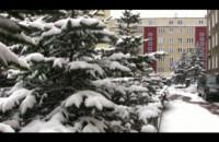 Wiosenny atak zimy