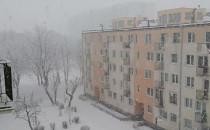 Snieg. Snieg i jeszcze raz snieg