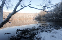 Zimowy spacer po Lasach Mirachowskich