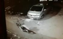 Szukam złodzieja, który okradł moje auto