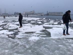 Zabawy na krach przy plaży w Gdyni