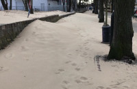 Piasek z plaży w Parku Północnym w Sopocie