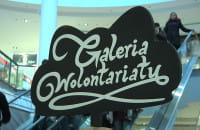 Galeria Wolontariatu