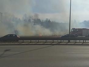 Straż Pożarna gasi ogień przy ul. Słowackiego
