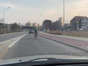 Po co im te ścieżki rowerowe?