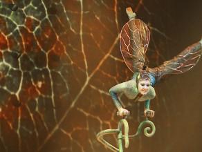 Podróż w mikrokosmos z Cirque du Soleil