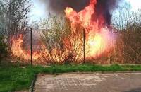 Pożar Orunia ul. Równa