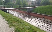 Stan kanalu Raduni
