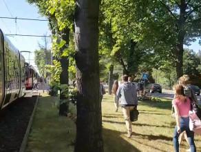 Stoją tramwaje na wysokości Chodowieckiego