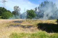 Pożar polany przy Hallera w Brzeźnie