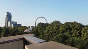 Widok z dachu Muzeum Miasta Gdyni