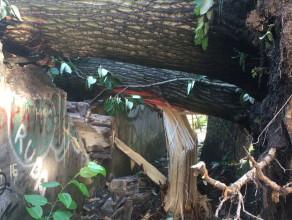 Zniszczone garaże przy Wałowej - powalone drzewo