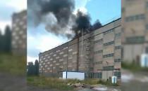 Pożar hali na terenach stoczniowych
