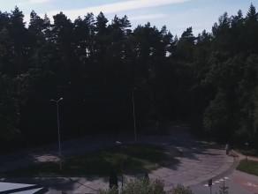 Ruszyła wycinka drzew w Matemblewie