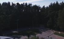 Wycinka w Matemblewie