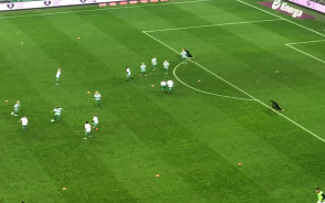 Młodzi piłkarze grają w przerwie meczu Lechia - Zagłębie