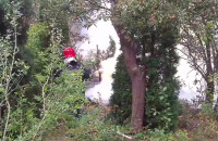 Akcja gaszenia altanki ogrodowej na Kolonii Ochota w Gdańsku