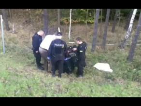 Policja ratuje zwierzę przy obwodnicy