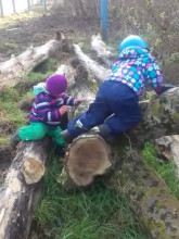 Leśna wspinaczka przedszkolaków