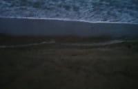Morze w Brzeźnie