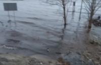 Cofka przy moście na Wyspę Sobieszewską