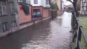 Woda w kanale Raduni płynie pod prąd zwykłego nurtu
