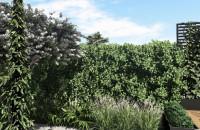 Projekt małego ogrodu w Gdyni | Wzgórze Bernadowo | Pracownia STTYK
