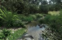 Projekt naturalistycznego strumyka - Ogród inspirowany naturą | Gdańsk Osowa | Pracownia STTYK