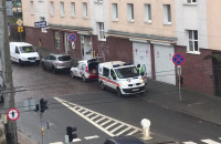 Łowy strażników miejskich w centrum Gdyni