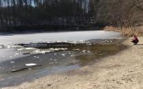 Kąpiel z psem w jeziorze Otominskim