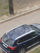 Ptaki brudzą auta w Parku Siennickim