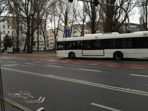 Białe autobusy w Gdyni. Testy hybrydy na normalnej linii