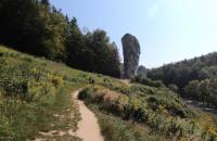 Wędrówki po Ojcowskim Parku Narodowym