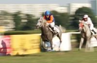 Wyścigi konne na sopockim Hipodromie