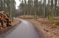 Szybka trasa Lasami Oliwskimi -  Oliva Ride