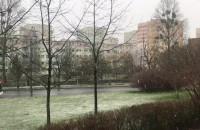 Śnieg pada w Gdyni