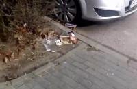 Zaśmiecone chodniki na ul. Startowej