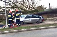 Drzewo przygniotło samochód  ul. Kartuska Gdańsk