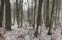 Śnieg w pierwszy dzień wiosny :)