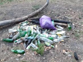 Nie róbmy z lasu śmietnika