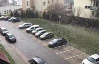 Śnieżyca w Gdańsku