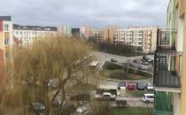 Straż miejska na Witominie apeluje o...